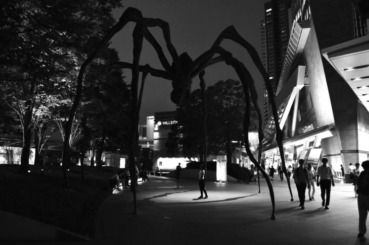 Spiders Rikako.JPG